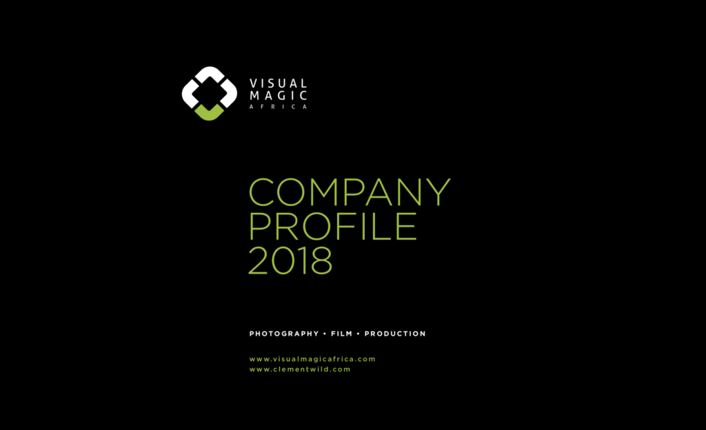 Our Company Profile – PDF
